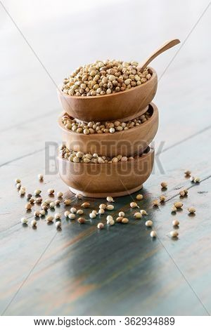 Organic Dried Coriander Seeds (coriandrum Sativum) In Wooden Bowls With Spoon On Rustic Background.