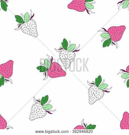 Strawberry On White Background. Vector Drawing Of Strawberry Berries. Handwork Drawn. Watercolor Sea