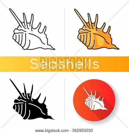 Spiked Seashell Black Glyph Icon. Exotic Sea Shell, Conchology Silhouette Symbol On White Space. Tro
