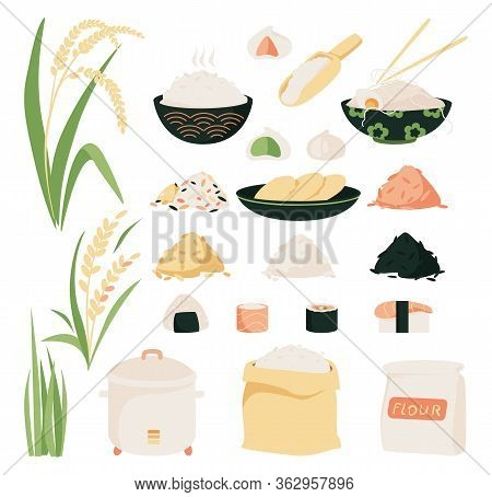 Rice Vector Icon Set. Collection Of Icons Of Rice Variety, Plants From Plantation And Isolated Produ