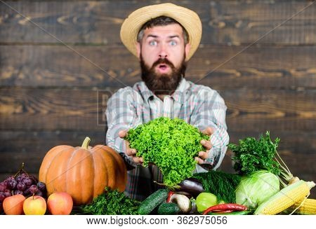 Sell Vegetables. Local Market. Locally Grown Crops Concept. Buy Vegetables Local Farm. Typical Farme