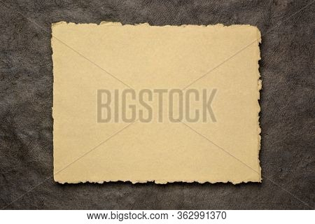 beige and black abstract - a sheet of blank Indian handmade rag paper against textured bark paper, copy space