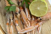Close up of fresh scampi and lemon poster