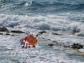 A white seashell on a beach of rough sea poster