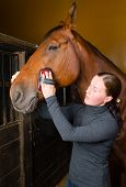 Woman grooming horse in the stall vertical format poster
