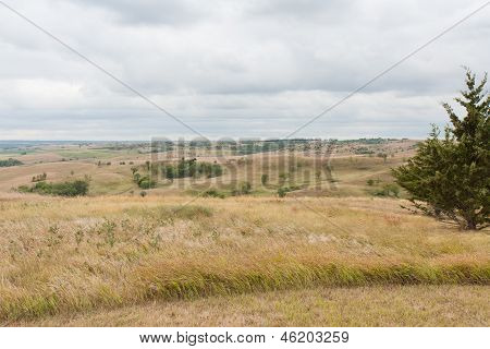 Golden Hills In Nebraska