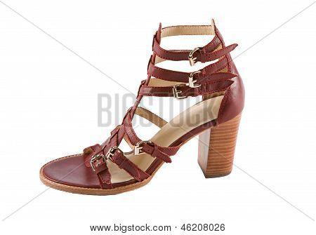Maroon High Heel Ankle Boot Leather Roman Sandal