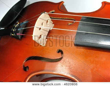 Musical Classic Violin Macro Detail Close-up Over White