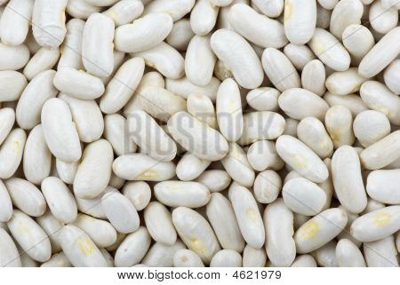 Abstract background of long white haricot beans poster