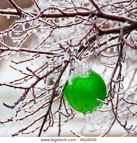 Ornament In Snow