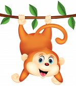 Vector illustration of Cute monkey cartoon hanging poster
