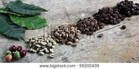 Row of roasted coffee beans in different levels. All on rustic wooden board.