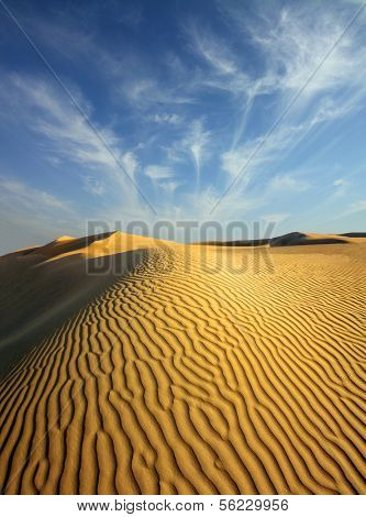 beatiful evening landscape in desert