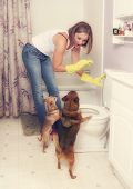 a woman flushing something down the toilet in front of two dogs poster