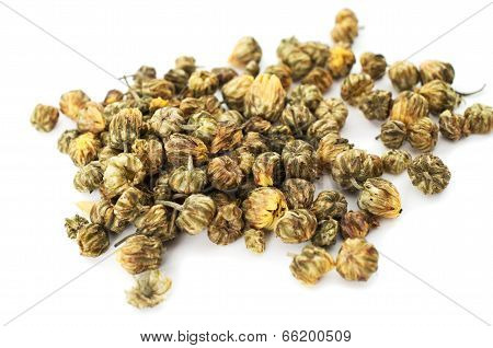 A Heap Of Dried Chrysanthemum Flowers On White Background