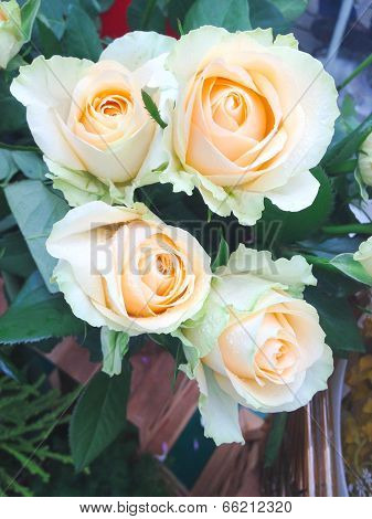 Bouquet Of Light Orange Roses