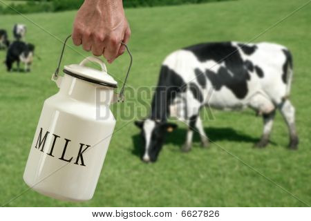 Milk Pot Farmer Hand Cow In Meadow