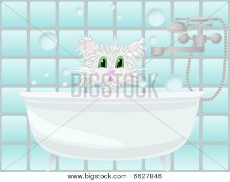 Cat taking bath