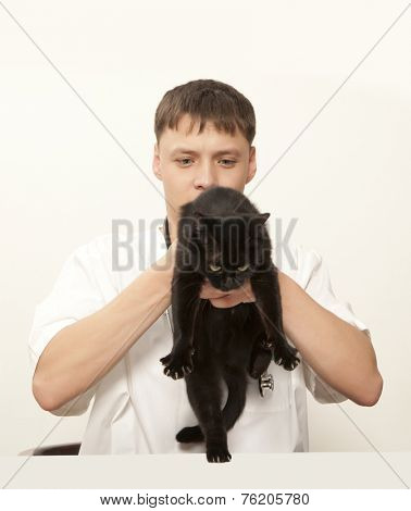 Veterinarian surgeon doctor making a checkup of a black cat poster