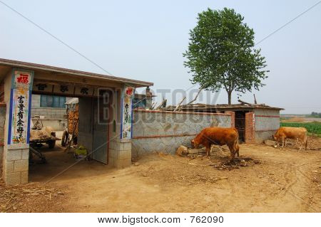 Rural life in China poster