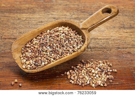 roasted buckwheat kasha on a rustic wooden scoop against grunge wood