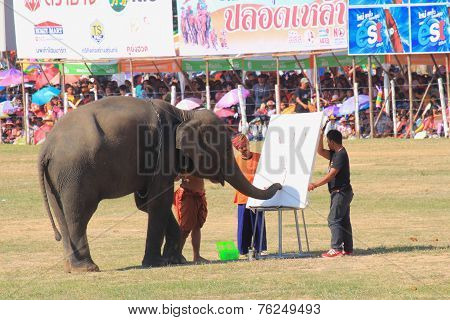 Elephant start to draw picture