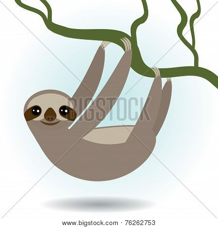 Three-toed sloth on green branch on white background. vector