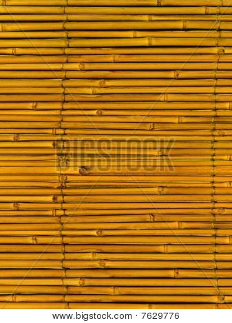 Bamboo  Abstract Background