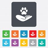 Shelter pets sign icon. Hand holds paw symbol. Animal protection. Rounded squares 11 buttons. Vector poster