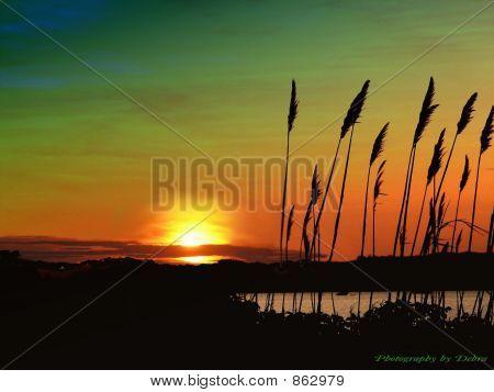 Jamestown Sunset