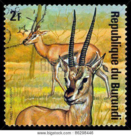 Vintage  Postage Stamp. Thomson Gaselies . Animals Burundi.