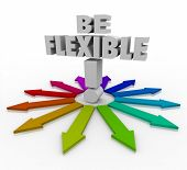 Be Flexible 3d words on arrows pointing in different directions to illustrate the need to be adaptive, responsive and open to change to succeed in altered conditions in business or life poster