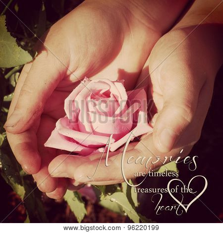Instagram Of  A Childs Dirty Garden Hands Holding Rose With Quote