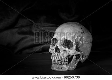 Still Life,black And White Of Human Skull On Wooden Table
