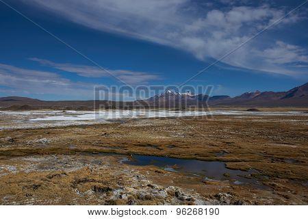 Wetland on the Altiplano