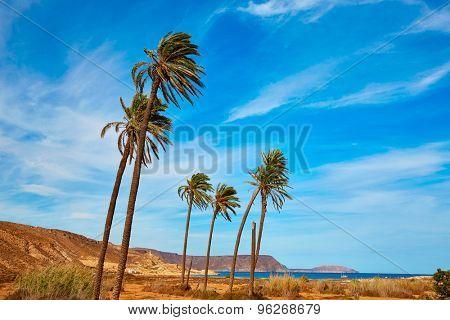 Almeria in Cabo de Gata Playazo Rodalquilar beach at Mediterranean Spain