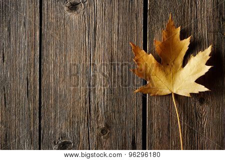 Autumn maple leaf over old wooden background with copy space