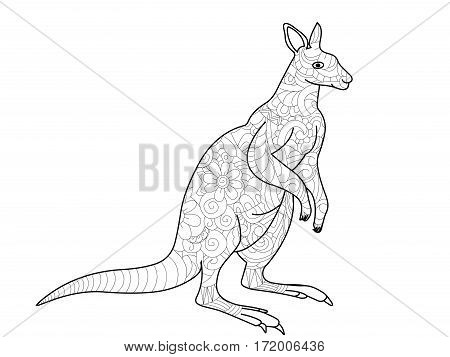 kangaroo coloring book for adults vector illustration. Anti-stress coloring for adult. Zentangle style. Black and white lines. Lace pattern