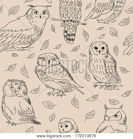 Seamless Texture Of Cute Owls With Leaves