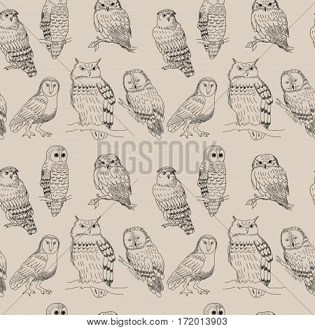 Seamless Pattern With Cute Cartoon Owls Strokes