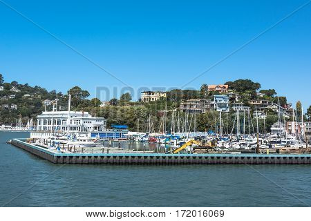 Boats in the harbor of Tiburon, San Francisco, California