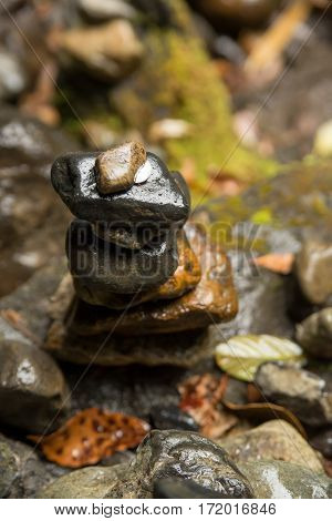 Close-up detail of a stack of wet pebbles with a coin on top on a rocky forest floor. Shinto religion and nature concept.