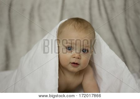 Adorable smilling 8 month boy under white blanket on grey background. Studio shot