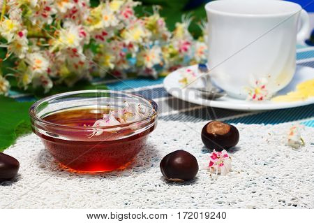 Glass bowl with chestnut honey and a cup of tea. On the background of blossoming chestnut branches.
