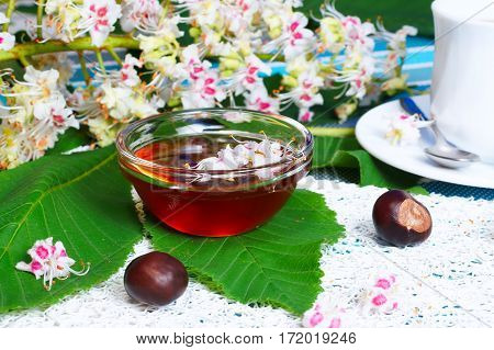 Glass bowl with chestnut honey and a cup of tea on the background of blossoming chestnut branches.