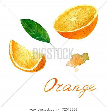 Watercolor illustration depicting a bright orange. Drawing watercolor.