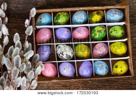 Set of colored quail eggs with feather and catkins on wood
