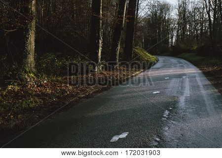 Asphalt Empty Road Passing Through The Forest In The Region Of Normandy, France. Landscape In Autumn