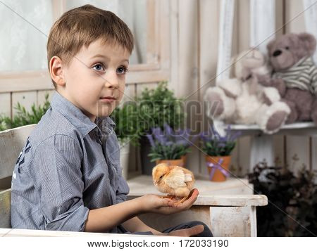 little boy with chicken in his hands. Bright children's room. Portrait of a baby with a chick