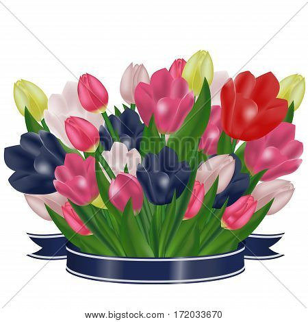 Bouquet of tulips with a blue ribbon. Festive spring flowers. Holiday symbol. Vector illustration.